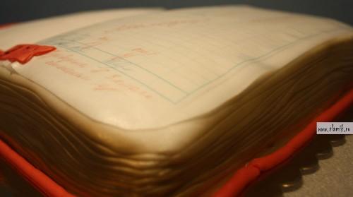 dnevnik-otlichnika-3